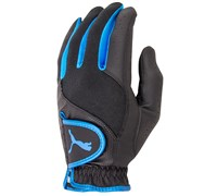 Puma Golf Sport Performance Glove (Black)