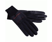 Galvin Green Wind Winter Gloves  Pair
