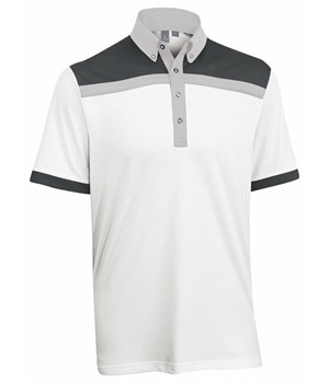 Ashworth Blocked Polo 2012