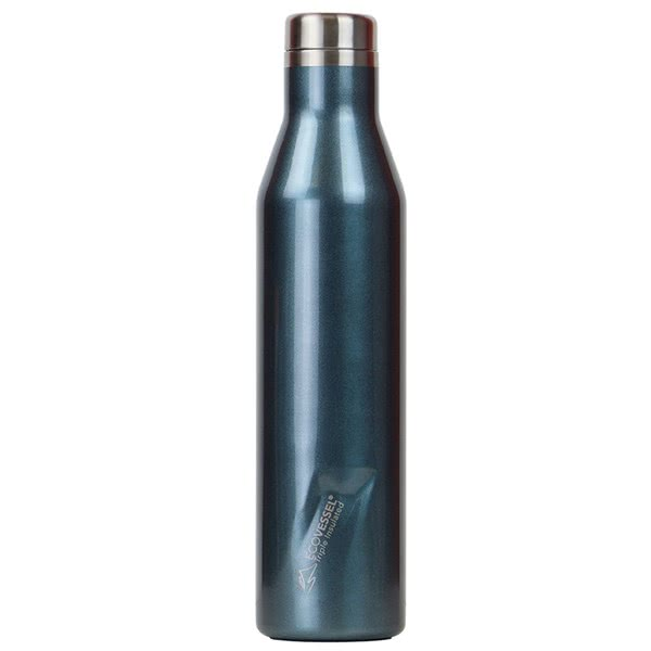 Ecovessel Aspen Insulated Bottle