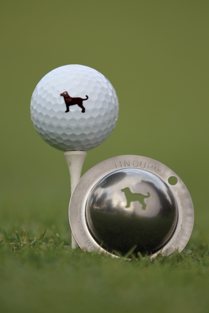 Are Golf Ball Pick