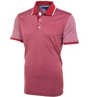 Tommy Hilfiger Mens Nick Striped Polo Shirt 2015