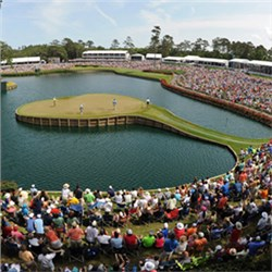 17th Hole Sees the Highs and Lows of The Players Championship